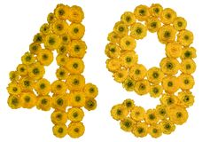 Arabic numeral 49, forty nine, from yellow flowers of buttercup,. Isolated on white background Royalty Free Stock Photos