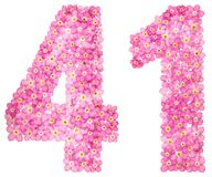 Arabic numeral 41, forty one, from pink forget-me-not flowers, i. Solated on white background Royalty Free Stock Photos
