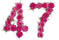 Arabic numeral 47, forty seven, from red flowers of rose, isolat. Ed on white background Stock Image
