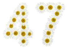 Arabic numeral 47, forty seven, from white flowers of chamomile,. Isolated on white background Stock Photo