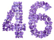 Arabic numeral 46, forty six, from flowers of viola, isolated on. White background Stock Photos