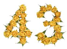 Arabic numeral 43, forty three, from yellow flowers of rose, iso. Lated on white background stock photo