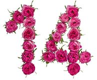 Arabic numeral 14, fourteen, from red flowers of rose, isolated. On white background Stock Images