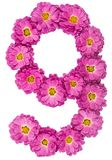 Arabic numeral 9, nine, from flowers of chrysanthemum, isolated Royalty Free Stock Photos