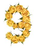 Arabic numeral 9, nine, from yellow flowers of rose, isolated on. White background royalty free stock photos