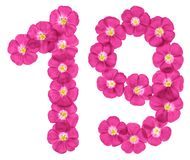 Arabic numeral 19, nineteen, from pink flowers of flax, isolated on white background.  stock image