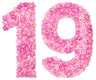Arabic numeral 19, nineteen, from pink forget-me-not flowers, is. Olated on white background Stock Images
