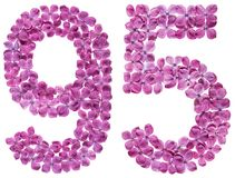 Arabic numeral 95, ninety five, from flowers of lilac, isolated. On white background Royalty Free Stock Image