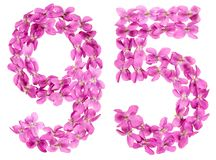 Arabic numeral 95, ninety five, from flowers of viola, isolated. On white background Stock Photo