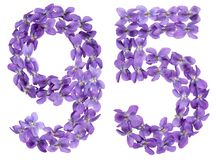 Arabic numeral 95, ninety five, from flowers of viola, isolated. On white background Stock Images