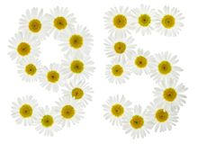 Arabic numeral 95, ninety five, from white flowers of chamomile,. Isolated on white background Stock Photos