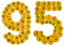 Arabic numeral 95, ninety five, from yellow flowers of buttercup. Isolated on white background Stock Photography