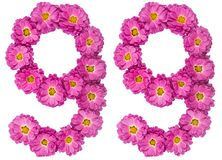 Arabic numeral 99, ninety nine, from flowers of chrysanthemum, i. Solated on white background Royalty Free Stock Photo