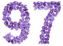 Arabic numeral 97, ninety seven, from flowers of viola, isolated. On white background Stock Image