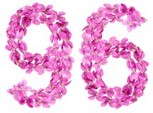 Arabic numeral 96, ninety six, from flowers of viola, isolated o. N white background Royalty Free Stock Images