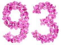 Arabic numeral 93, ninety three, from flowers of viola, isolated. On white background Stock Image