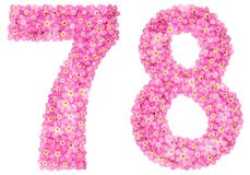 Arabic numeral 78, seventy eight, from pink forget-me-not flower. S, isolated on white background Stock Photos