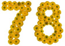 Arabic numeral 78, seventy eight, from yellow flowers of butterc. Up, isolated on white background Stock Photography