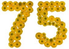 Arabic numeral 75, seventy five, from yellow flowers of buttercu. P, isolated on white background Royalty Free Stock Photos