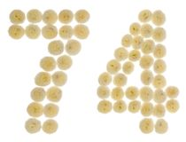 Arabic numeral 74, seventy four, from cream flowers of chrysanth. Emum, isolated on white background Royalty Free Stock Images