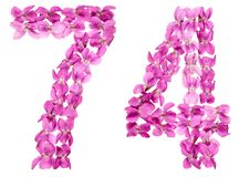 Arabic numeral 74, seventy four, from flowers of viola, isolated. On white background Stock Photos