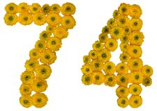 Arabic numeral 74, seventy four, from yellow flowers of buttercu. P, isolated on white background Royalty Free Stock Photography