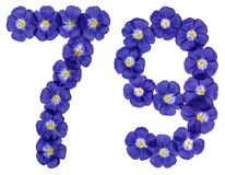 Arabic numeral 79, seventy nine, from blue flowers of flax, isol. Ated on white background Stock Image