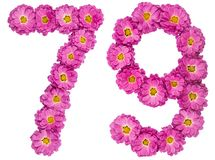 Arabic numeral 79, seventy nine, from flowers of chrysanthemum,. Isolated on white background Stock Photo