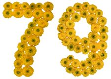 Arabic numeral 79, seventy nine, from yellow flowers of buttercu. P, isolated on white background Stock Image