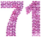 Arabic numeral 71, seventy one, from flowers of lilac, isolated. On white background royalty free stock image