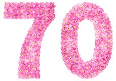 Arabic numeral 70, seventy, from pink forget-me-not flowers, iso. Lated on white background Royalty Free Stock Photography