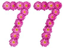 Arabic numeral 77, seventy seven, from flowers of chrysanthemum,. Isolated on white background Stock Photography
