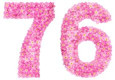 Arabic numeral 76, seventy six, from pink forget-me-not flowers,. Isolated on white background Royalty Free Stock Image