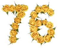 Arabic numeral 76, seventy six, from yellow flowers of rose, iso. Lated on white background royalty free stock photos