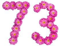 Arabic numeral 73, seventy three, from flowers of chrysanthemum,. Isolated on white background Stock Photo