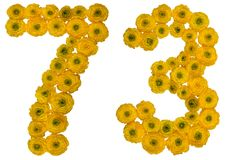 Arabic numeral 73, seventy three, from yellow flowers of butterc. Up, isolated on white background Stock Photos