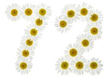 Arabic numeral 72, seventy two, from white flowers of chamomile,. Isolated on white background Stock Image