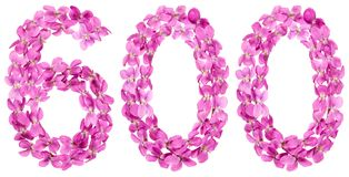 Arabic numeral 600, six hundred, from flowers of viola, isolated. On white background Royalty Free Stock Photos
