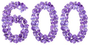 Arabic numeral 600, six hundred, from flowers of viola, isolated Stock Photo