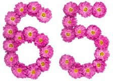 Arabic numeral 65, sixty five, from flowers of chrysanthemum, is. Olated on white background Royalty Free Stock Photo