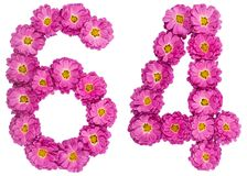 Arabic numeral 64, sixty four, from flowers of chrysanthemum, is. Olated on white background Royalty Free Stock Photos