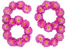 Arabic numeral 69, sixty nine, from flowers of chrysanthemum, is. Olated on white background Stock Images