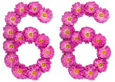 Arabic numeral 66, sixty six, from flowers of chrysanthemum, iso. Lated on white background Royalty Free Stock Photo