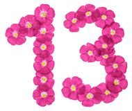 Arabic numeral 13, thirteen, from pink flowers of flax, isolated on white background royalty free illustration