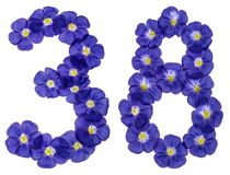 Arabic numeral 38, thirty eight, from blue flowers of flax, isol Stock Image