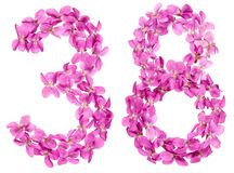 Arabic numeral 38, thirty eight, from flowers of viola, isolated. On white background royalty free stock photos