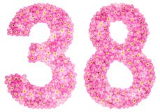 Arabic numeral 38, thirty eight, from pink forget-me-not flowers royalty free illustration