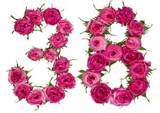Arabic numeral 38, thirty eight, from red flowers of rose, isola Stock Photos