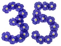 Arabic numeral 35, thirty five, from blue flowers of flax, isola Stock Photos