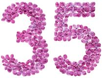 Arabic numeral 35, thirty five, from flowers of lilac, isolated. On white background stock image